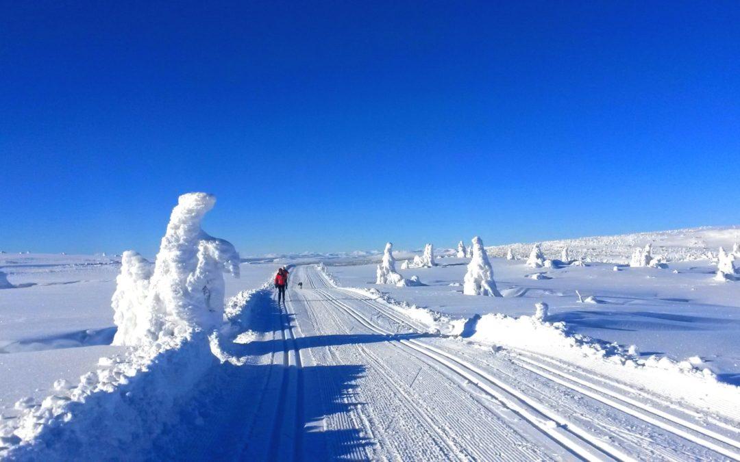 Gode skispor viktig for fritidsboligeiere
