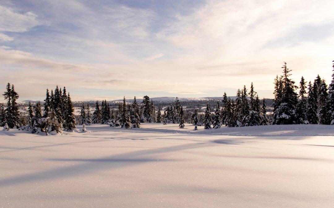 Intervjuer på Sjusjøen i forbindelse med BOR-prosjektet