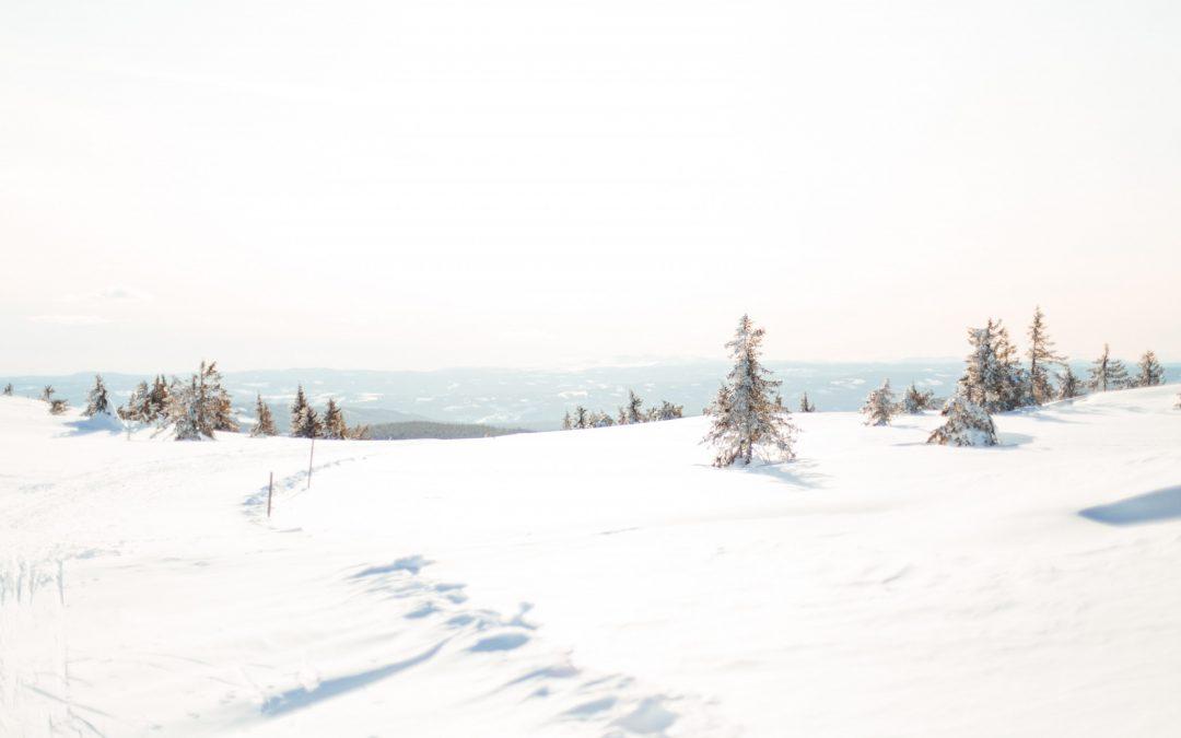Lillehamringens bruk av Sjusjøen og Nordseter