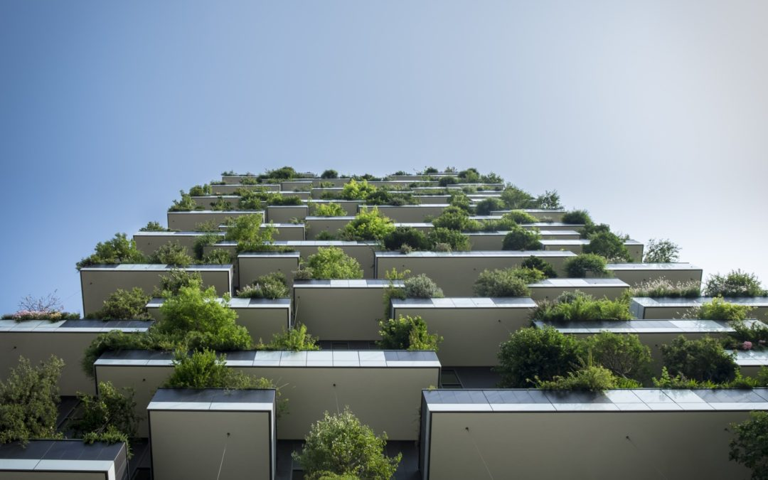 Søknad Sustainability Education